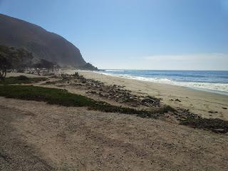 Beach in Santa Barbara on a sunny day