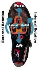 Diagram of foot